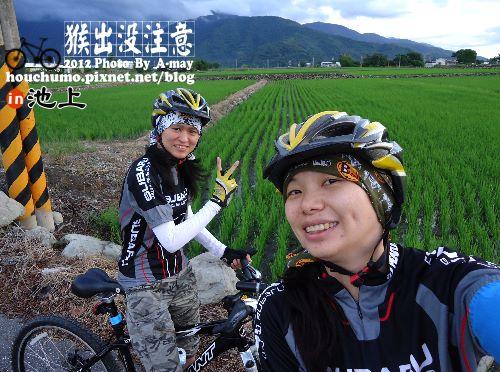 BC177 池上單車逍遙遊02
