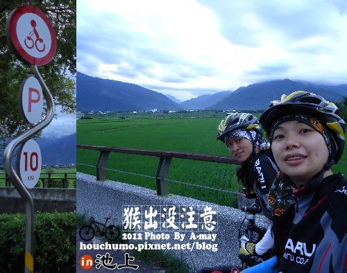 BC177 池上單車逍遙遊07