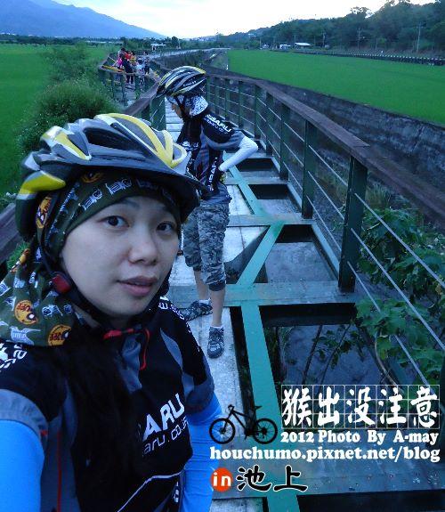 BC177 池上單車逍遙遊08