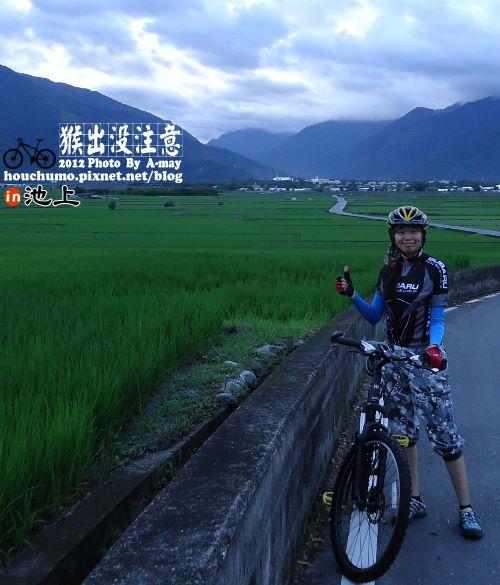 BC177 池上單車逍遙遊12