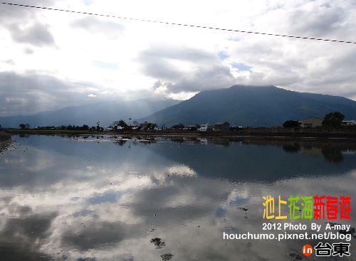 BC189 池上花海新春遊03