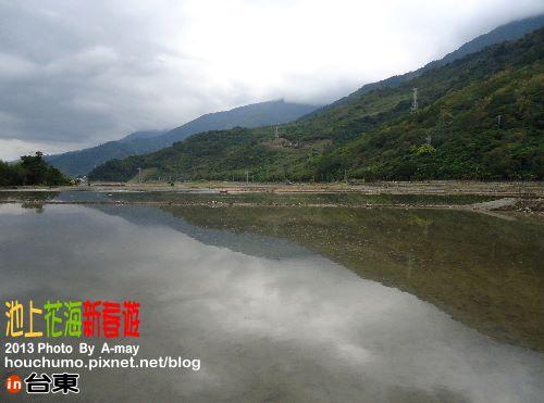 BC189 池上花海新春遊04