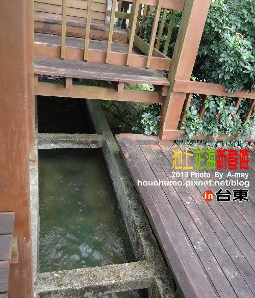 BC189 池上花海新春遊12