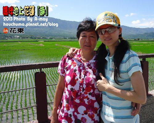 BC210 媽咪池上 花蓮 04