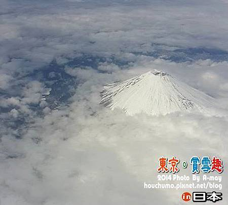 BC239 東京。賞雪趣25