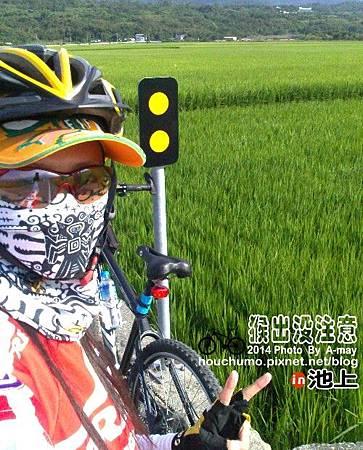 BC258 池上鐵馬逍遙遊02