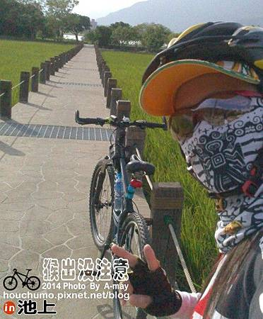 BC258 池上鐵馬逍遙遊05
