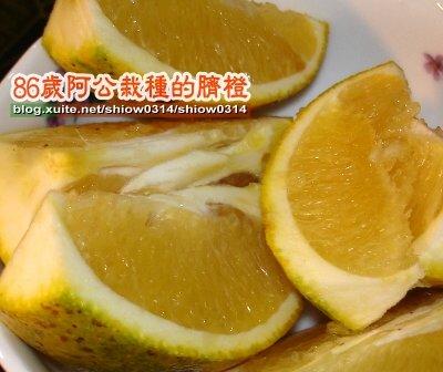 SHOW阿公栽種的臍橙85  05.jpg