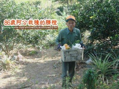 SHOW阿公栽種的臍橙85  07.jpg