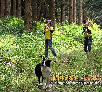 BC058錦屏林道探險.私房景點(4)80  10.jpg