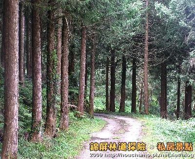 BC058錦屏林道探險.私房景點(4)80  11.jpg