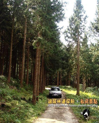 BC058錦屏林道探險.私房景點(4)80  14.jpg
