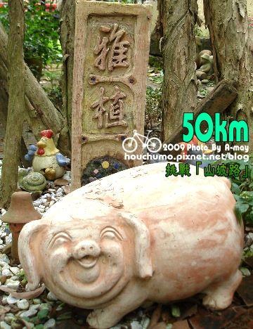 BC117 挑戰「山坡路」80  15.jpg