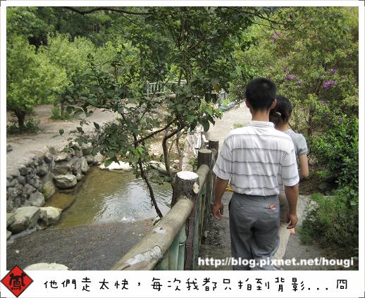 林間小道.jpg