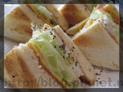 我的蔬菜三明治.jpg