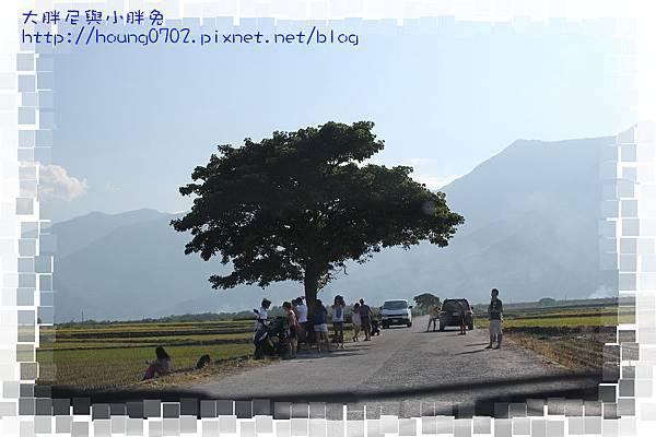 IMG_4030