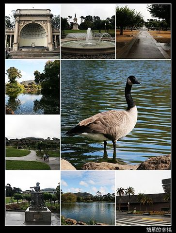 nEO_IMG_golden gate park.jpg