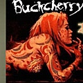 buckcherry_banner_1.jpg