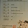 2004.03.28. 台北 國道