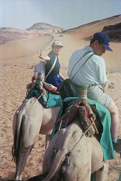 沙哈拉沙漠駱駝遊 img0003