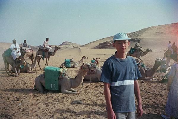 沙哈拉沙漠駱駝遊 img0005