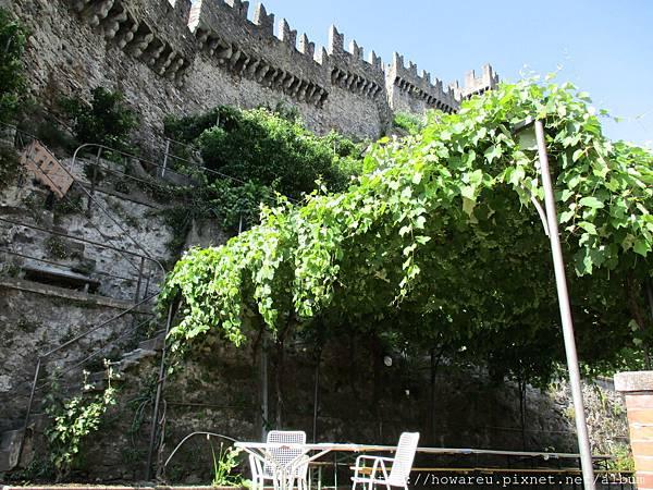 後院葡萄藤與城堡