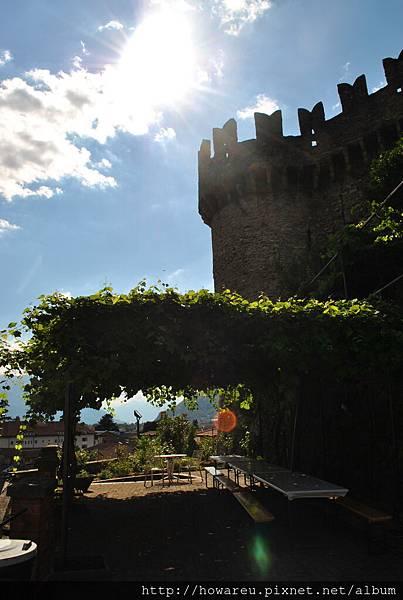葡萄藤與城堡