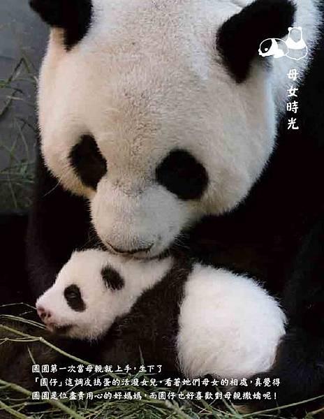 yuanzi open page_ch4.JPG