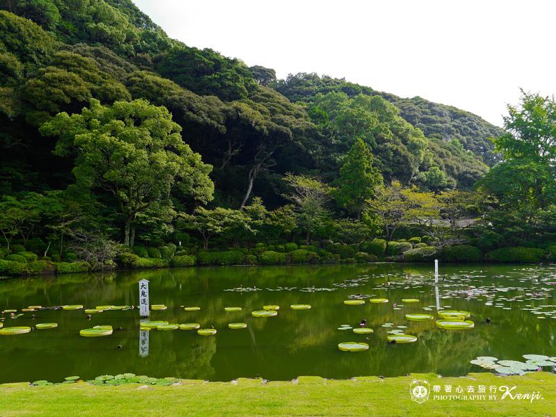 九州大分海地獄-8.jpg