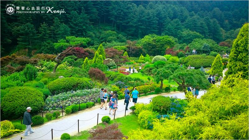 晨靜樹木園-8.jpg