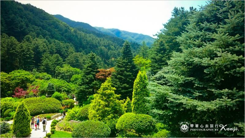 晨靜樹木園-10.jpg