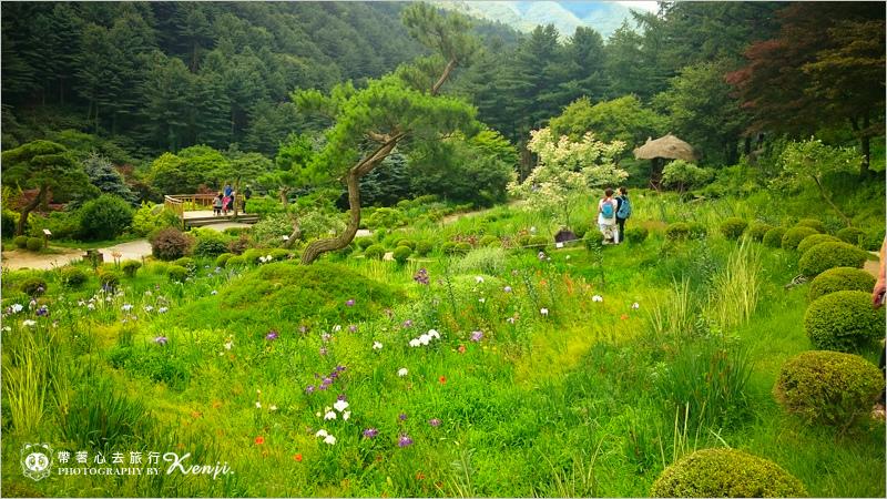 晨靜樹木園-12.jpg