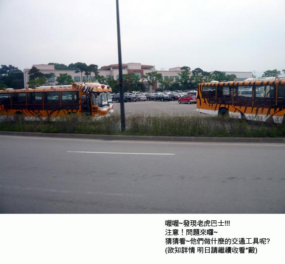 20100528-17.jpg