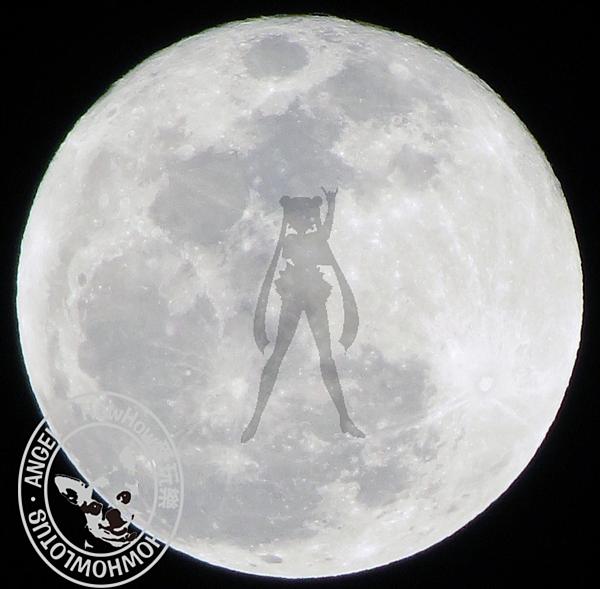 娘娘說她是月光仙子不是嫦娥