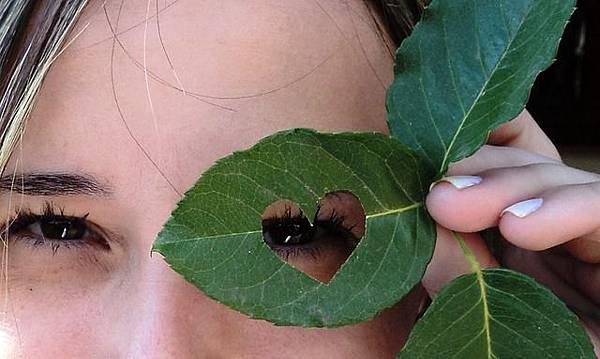 leaf-117554_640 (1)