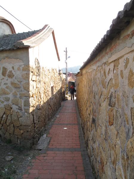 民俗村外的小巷