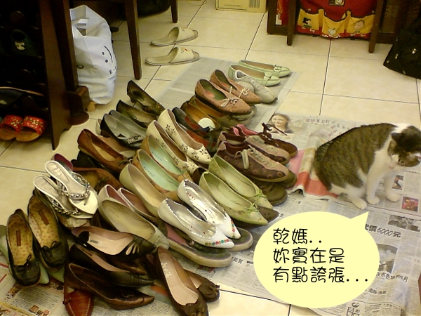 鞋子大閱兵2.jpg