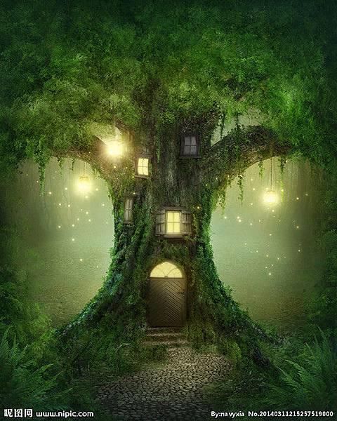 夢幻森林14