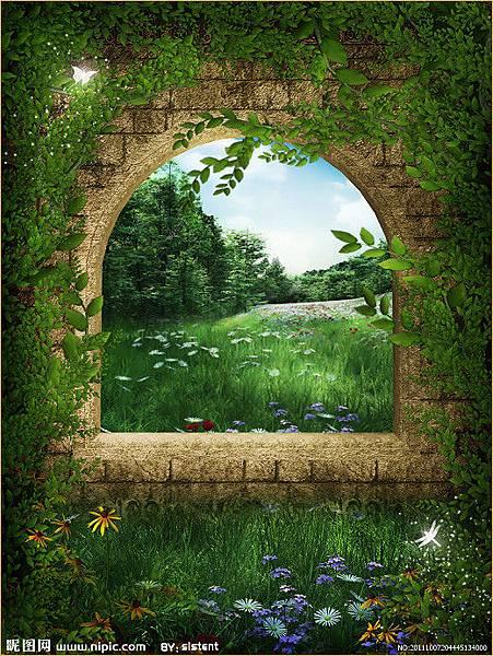 夢幻森林11