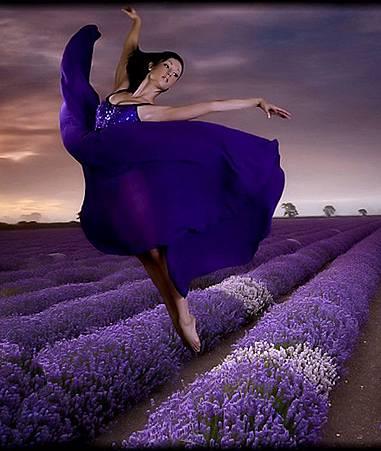 舞蹈之美11