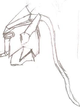02-Head-Side