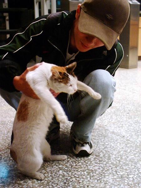 宜美貓學走路