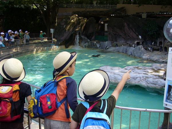 所以就去了上野動物園
