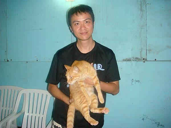 胖貓可以抱
