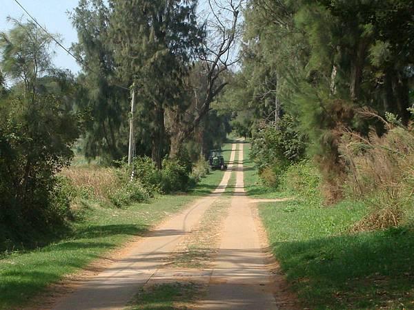 小金門的環島道路