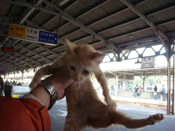 在臺南火車站準備回家