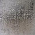 文廟最著名的就是82塊進士碑