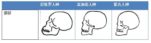 隆鼻山根整型手術做鼻子高雄診所席睿時尚美醫多少錢經口隆鼻獨家 (1).jpg