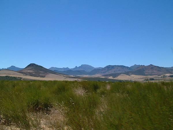 南非茶農06.jpg