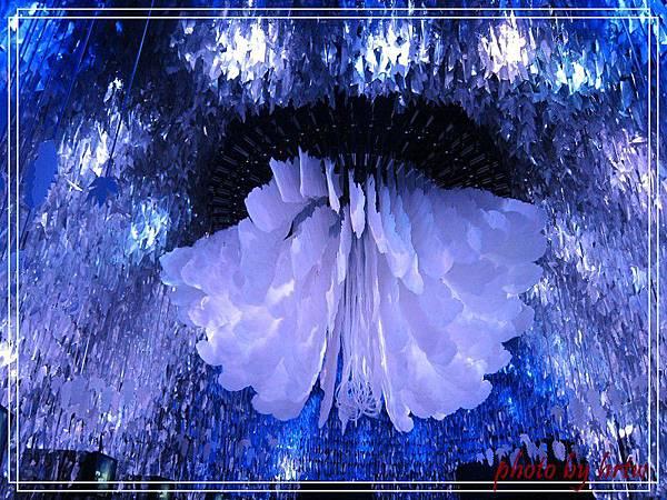 2011-08-01 139.jpg